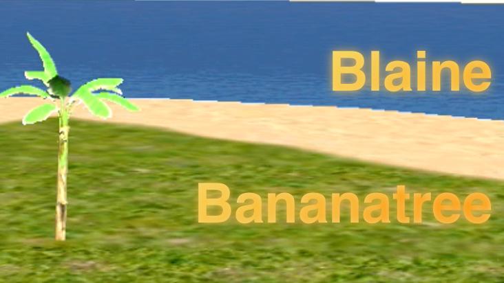 Blaine Bananatree